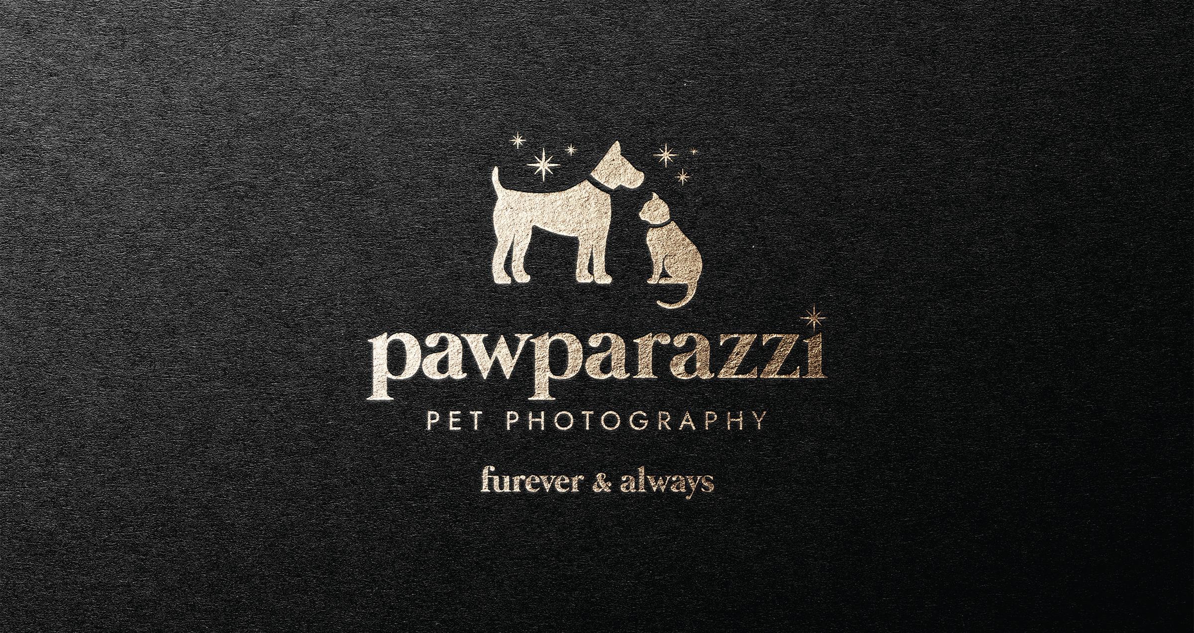 Pawparazzi Winnipeg Feminist Brands Website Design Feminist Entrepreneurs Brand Presentation Feature