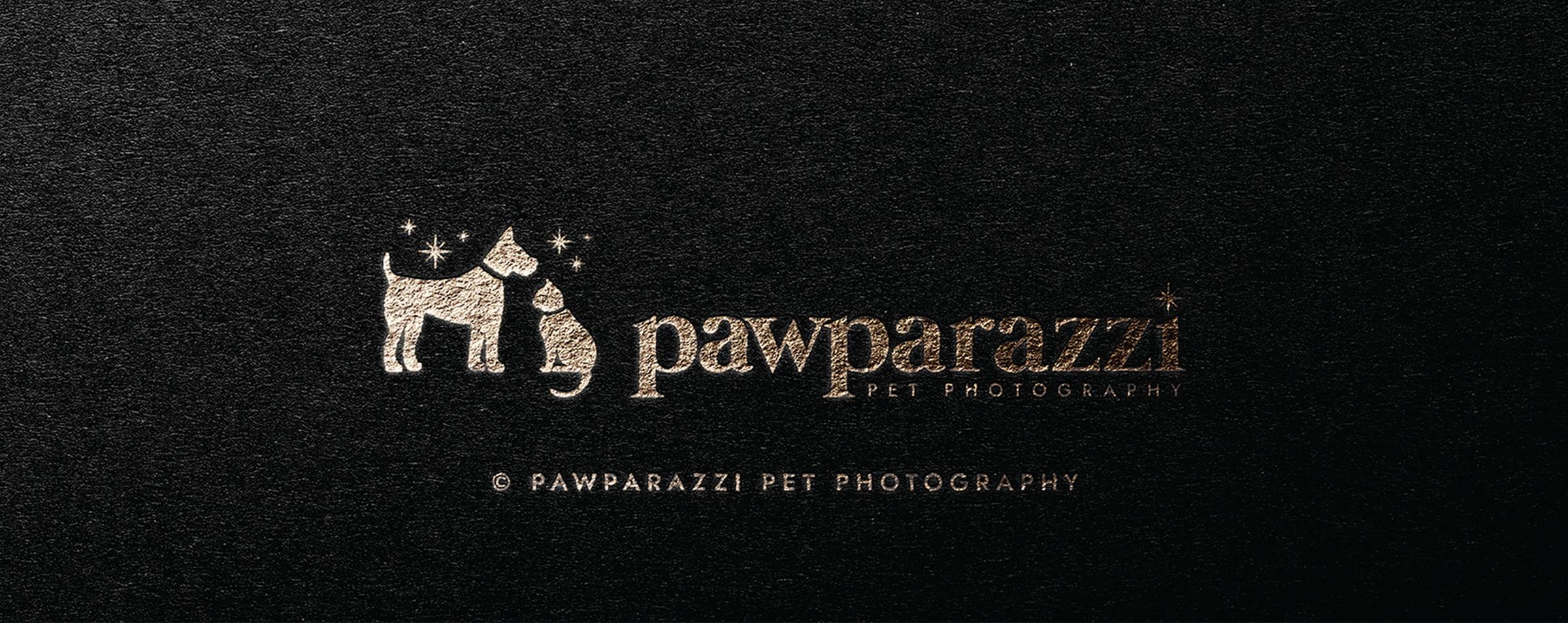 Pawparazzi Winnipeg Feminist Brands Website Design Feminist Entrepreneurs Brand Presentation 2