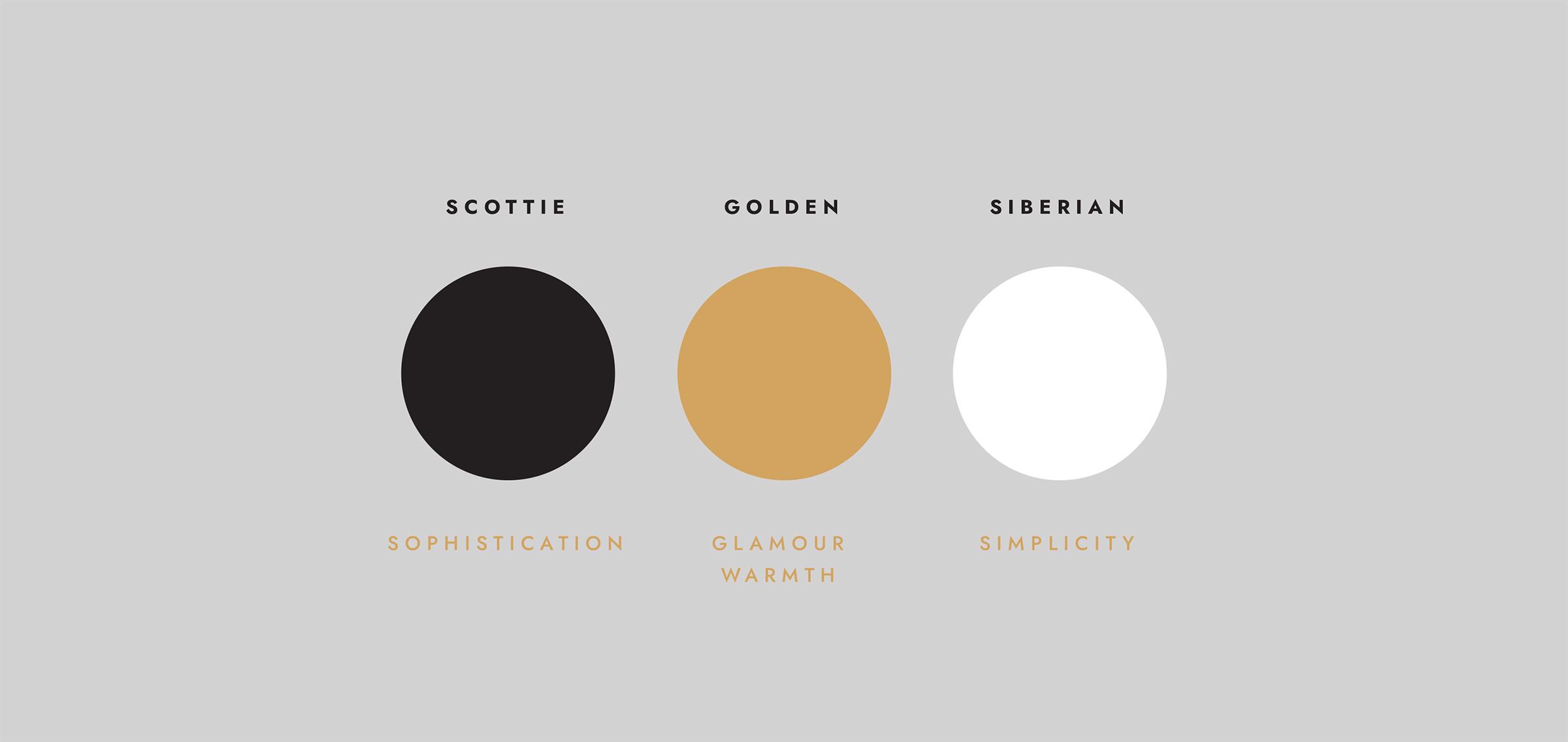 Pawparazzi Winnipeg Feminist Brands Website Design Feminist Entrepreneurs Brand Presentation Brand Colours
